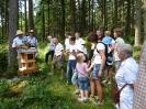 Bienen am Untersberg_2